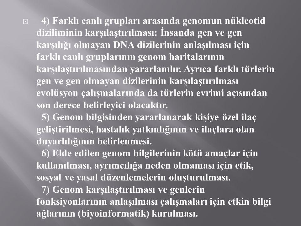  4) Farklı canlı grupları arasında genomun nükleotid diziliminin karşılaştırılması: İnsanda gen ve gen karşılığı olmayan DNA dizilerinin anlaşılması