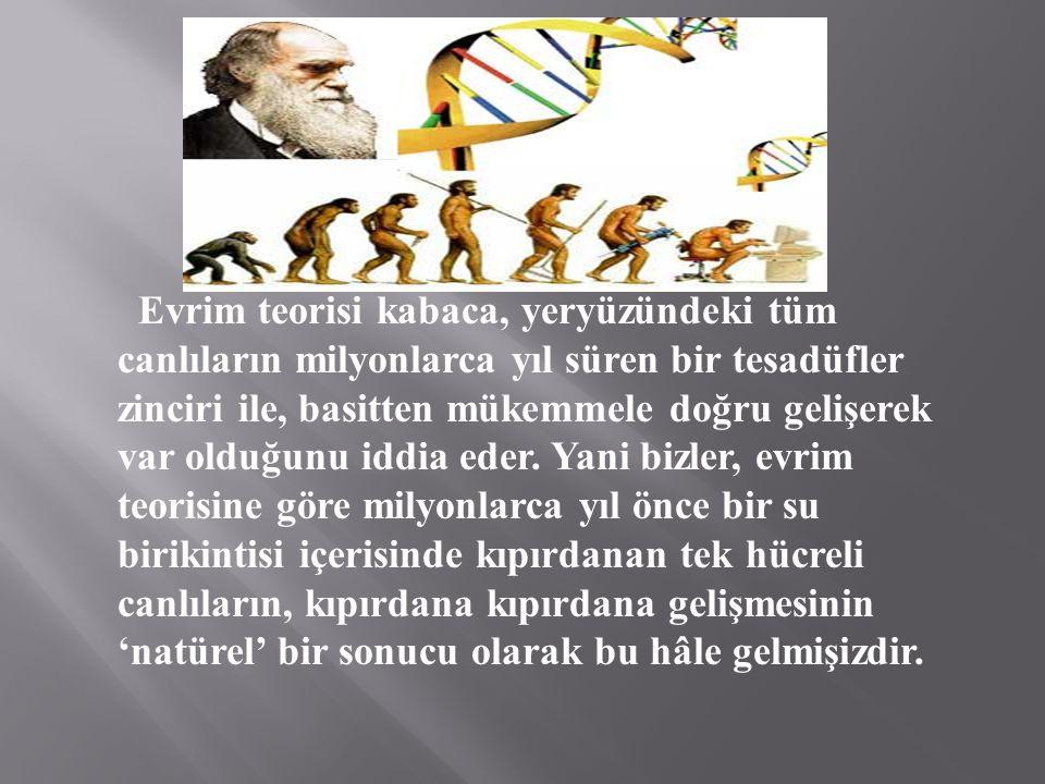Evrim teorisi kabaca, yeryüzündeki tüm canlıların milyonlarca yıl süren bir tesadüfler zinciri ile, basitten mükemmele doğru gelişerek var olduğunu iddia eder.