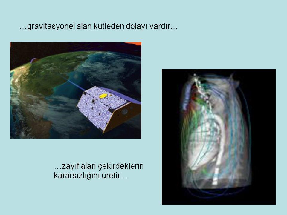 …gravitasyonel alan kütleden dolayı vardır… …zayıf alan çekirdeklerin kararsızlığını üretir…