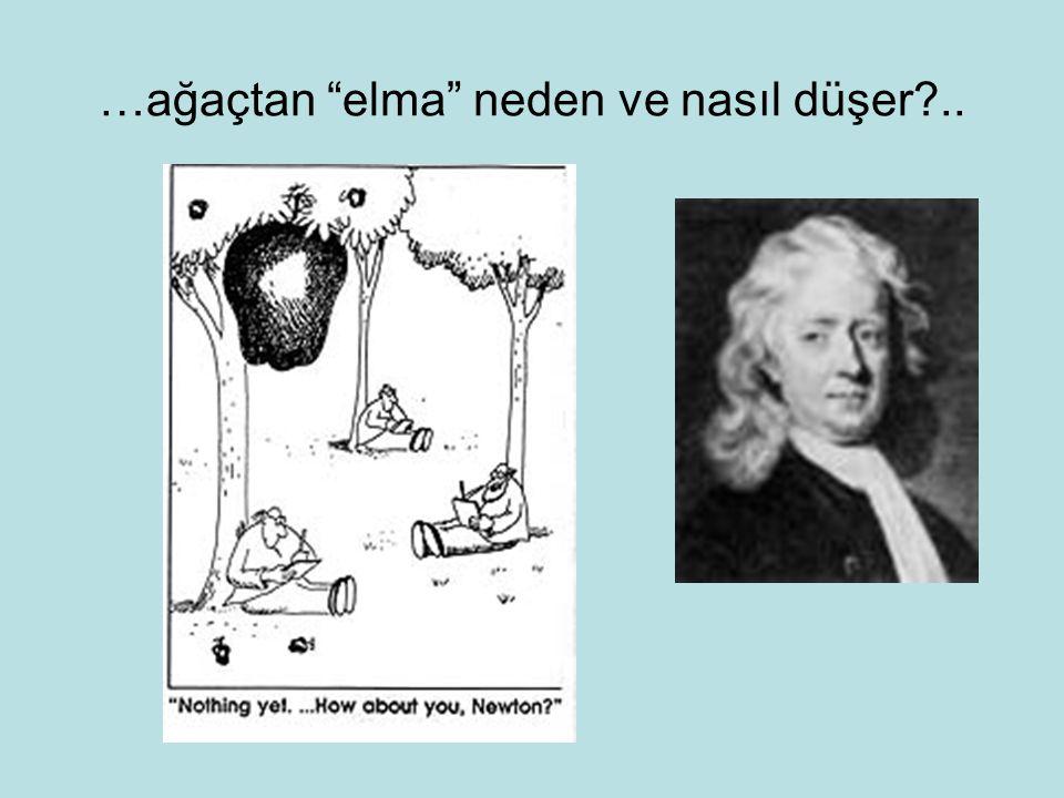 …ağaçtan elma neden ve nasıl düşer?..