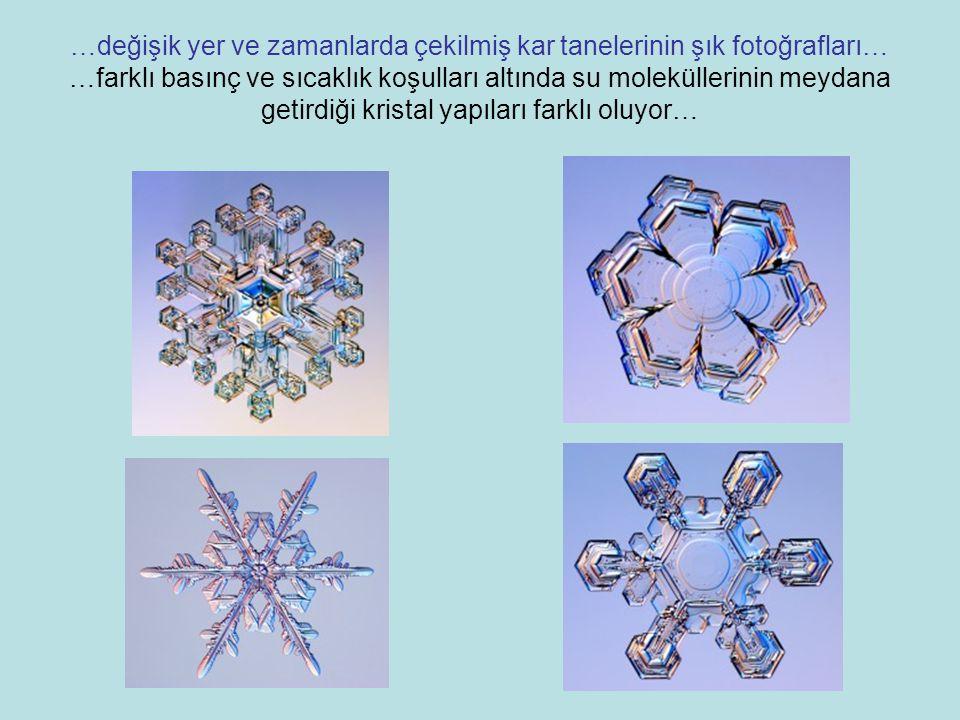 …değişik yer ve zamanlarda çekilmiş kar tanelerinin şık fotoğrafları… …farklı basınç ve sıcaklık koşulları altında su moleküllerinin meydana getirdiği