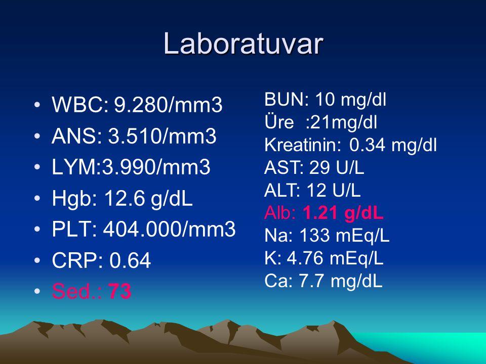 Laboratuvar WBC: 9.280/mm3 ANS: 3.510/mm3 LYM:3.990/mm3 Hgb: 12.6 g/dL PLT: 404.000/mm3 CRP: 0.64 Sed.: 73 BUN: 10 mg/dl Üre :21mg/dl Kreatinin: 0.34