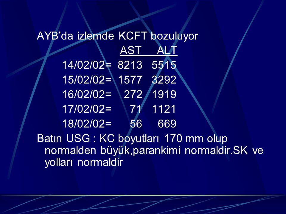 AYB'da izlemde KCFT bozuluyor AST ALT 14/02/02= 8213 5515 15/02/02= 1577 3292 16/02/02= 272 1919 17/02/02= 71 1121 18/02/02= 56 669 Batın USG : KC boy