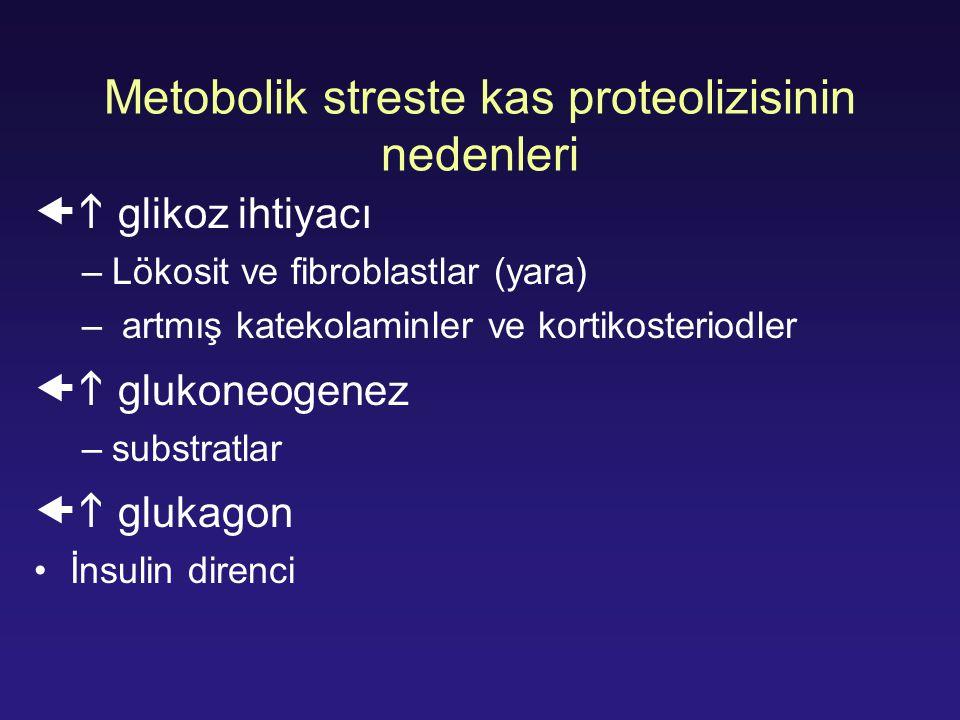 Metobolik streste kas proteolizisinin nedenleri  glikoz ihtiyacı –Lökosit ve fibroblastlar (yara) – artmış katekolaminler ve kortikosteriodler  gl