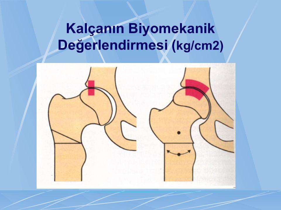 Kalçanın Biyomekanik Değerlendirmesi ( kg/cm2)