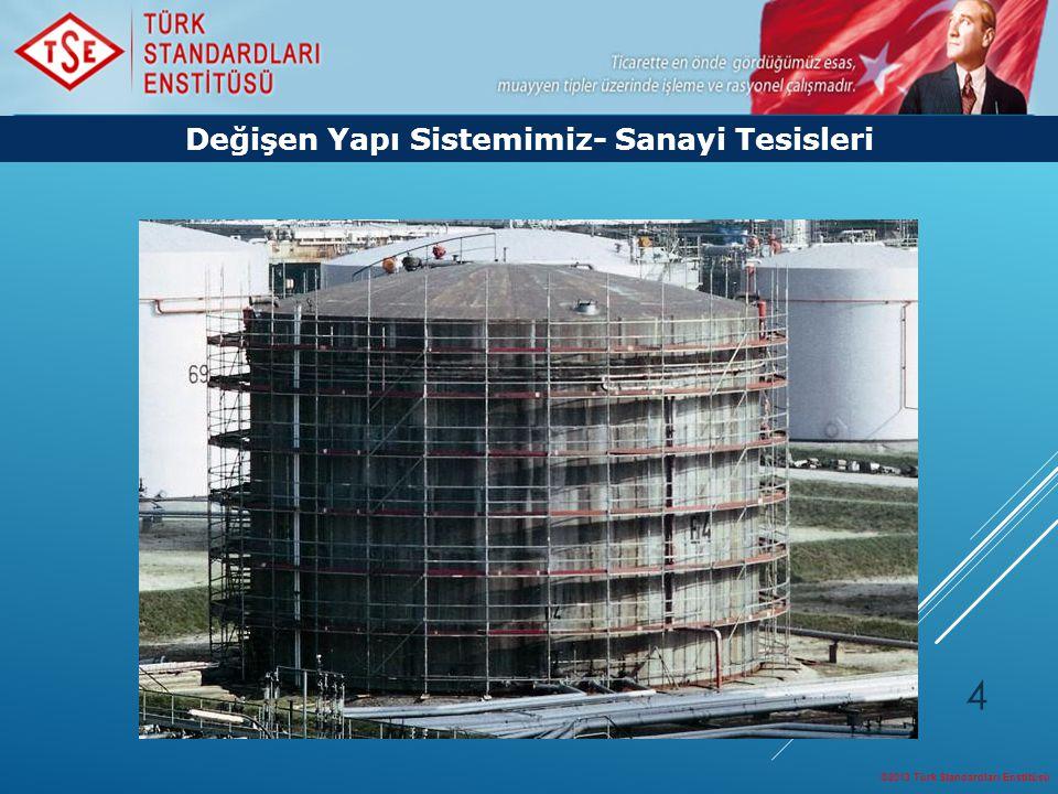 ©2013 Türk Standardları Enstitüsü 4 Değişen Yapı Sistemimiz- Sanayi Tesisleri