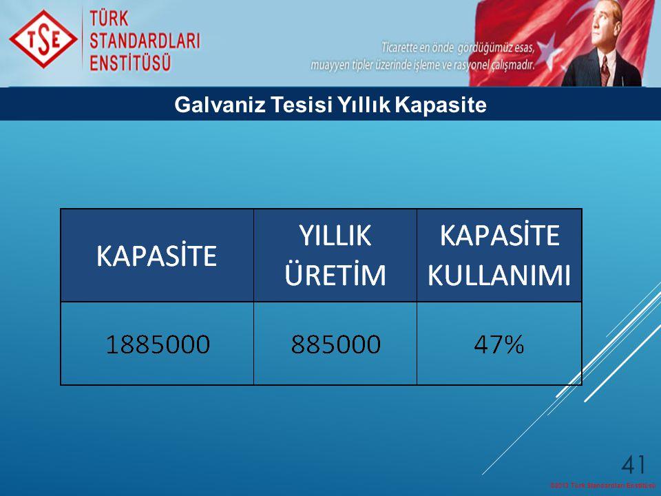 ©2013 Türk Standardları Enstitüsü 41 Galvaniz Tesisi Yıllık Kapasite
