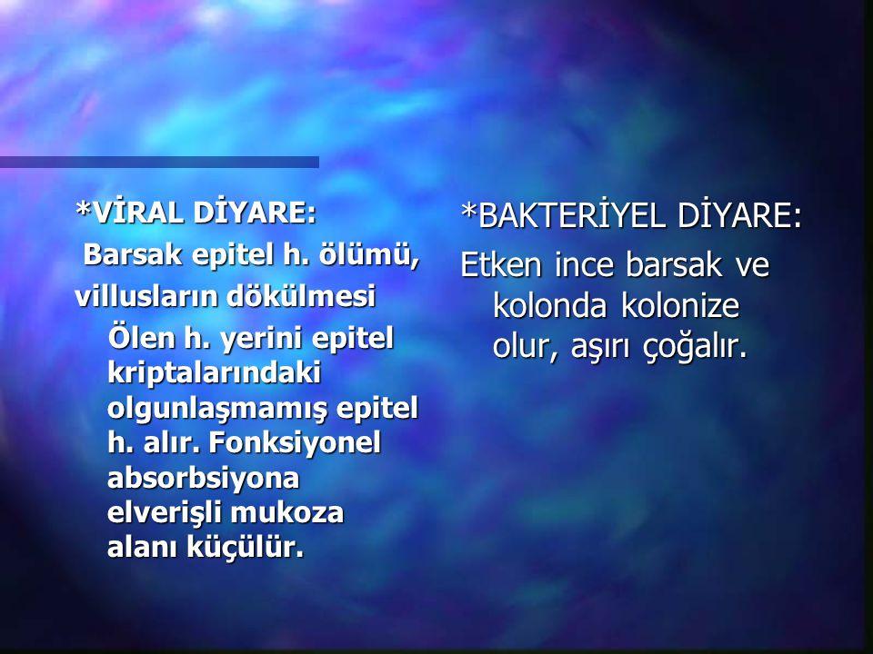 *VİRAL DİYARE: Barsak epitel h. ölümü, Barsak epitel h. ölümü, villusların dökülmesi Ölen h. yerini epitel kriptalarındaki olgunlaşmamış epitel h. alı