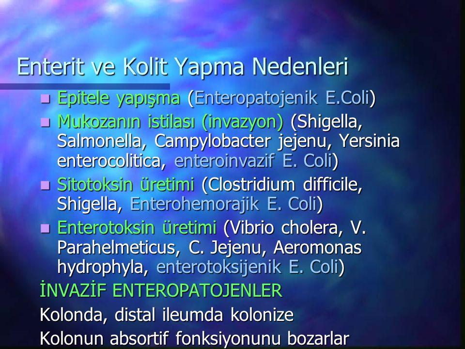 Enterit ve Kolit Yapma Nedenleri Epitele yapışma (Enteropatojenik E.Coli) Epitele yapışma (Enteropatojenik E.Coli) Mukozanın istilası (invazyon) (Shig