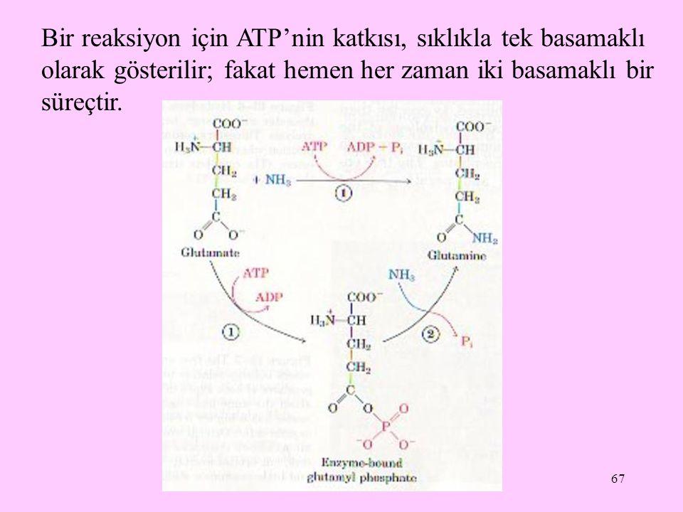 67 Bir reaksiyon için ATP'nin katkısı, sıklıkla tek basamaklı olarak gösterilir; fakat hemen her zaman iki basamaklı bir süreçtir.