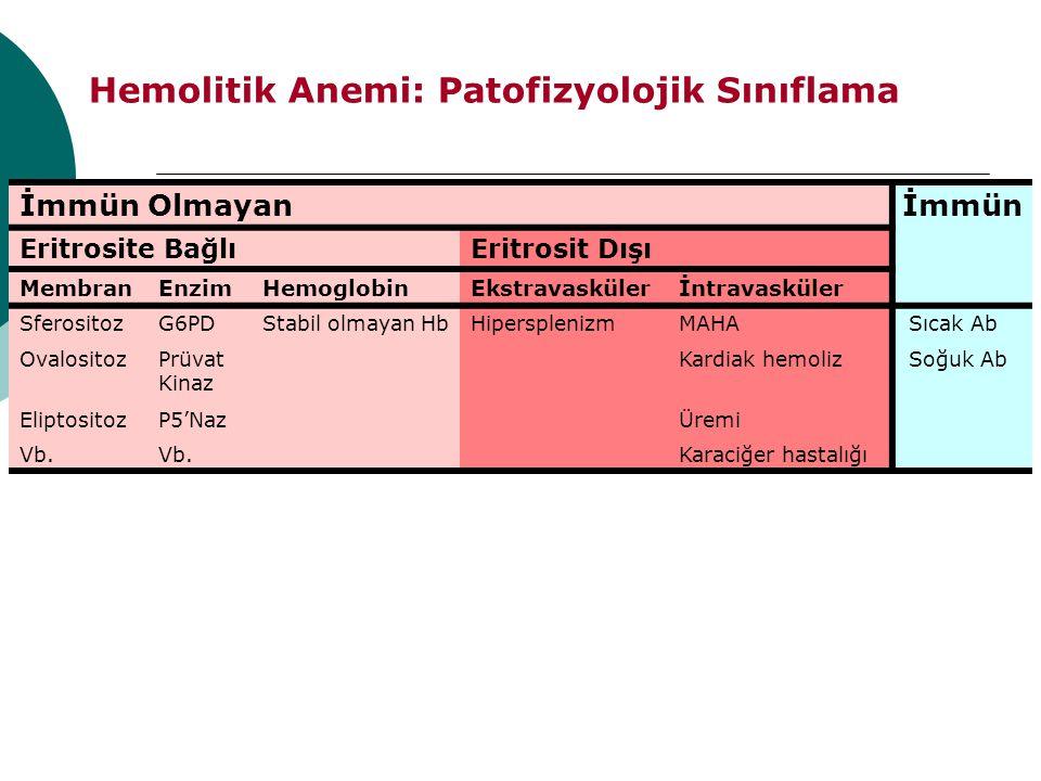 Hemolitik Anemi: Patofizyolojik Sınıflama İmmün Olmayanİmmün Eritrosite BağlıEritrosit Dışı MembranEnzimHemoglobinEkstravaskülerİntravasküler Sferosit