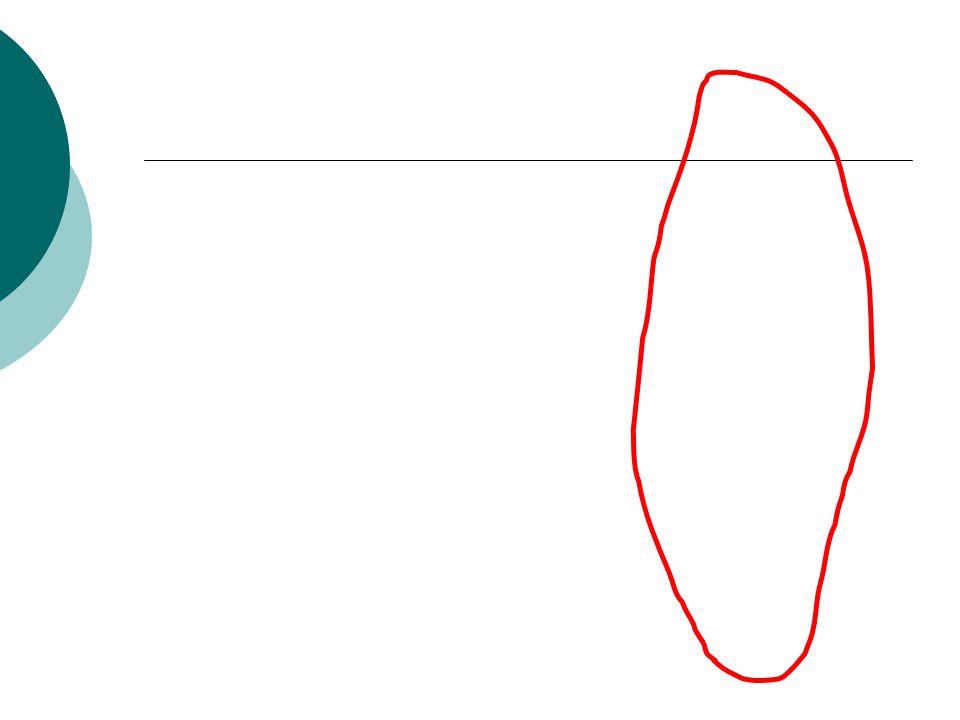 Megaloblastik anemiler DNA sentezinin bozulması ile kemik iliği ve periferik kanda kendine özel bulgular veren anemidir.