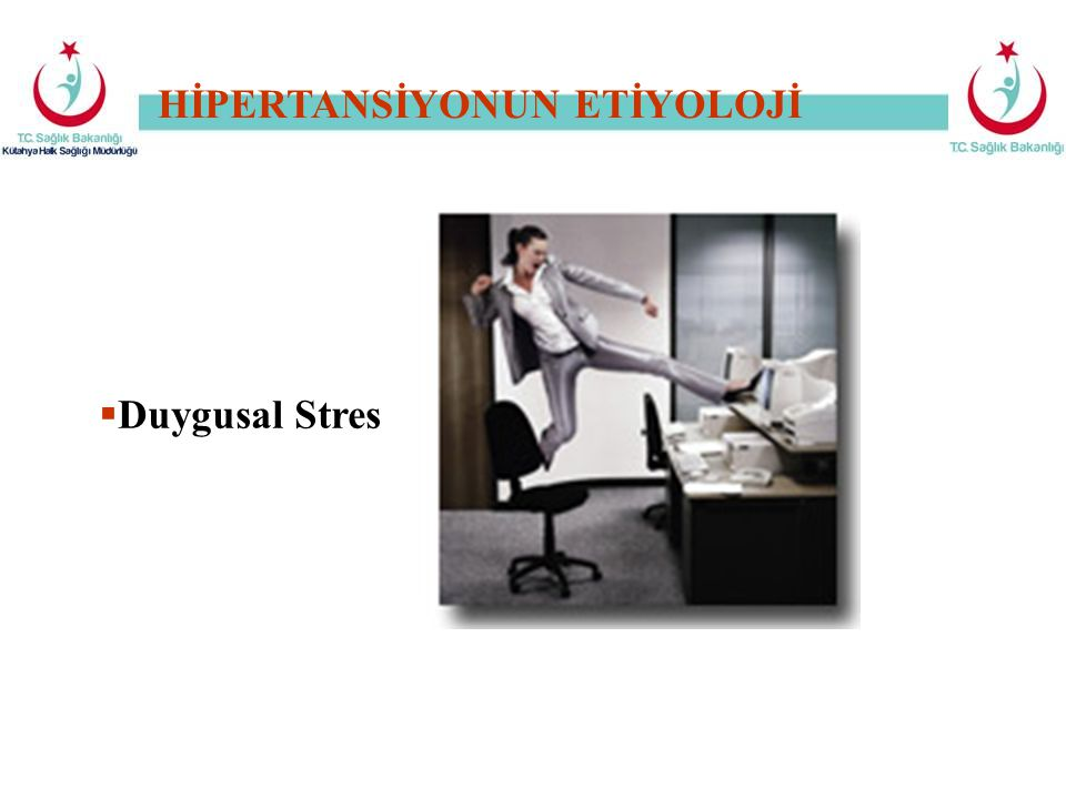 HİPERTANSİYONUN ETİYOLOJİ  Duygusal Stres