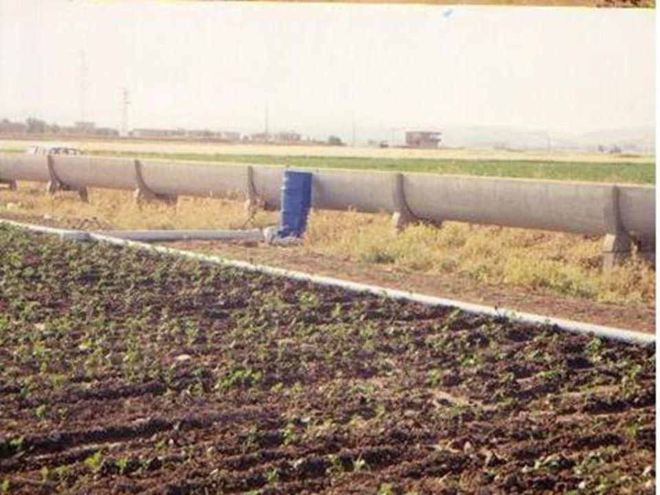 Karık Sulama yönteminin uygulanacağı koşullar Karık sulama yöntemi, sıraya ekilen ya da dikilen bitkilerle, meyve ağaçları ve bağın sulanmasında kullanılır.