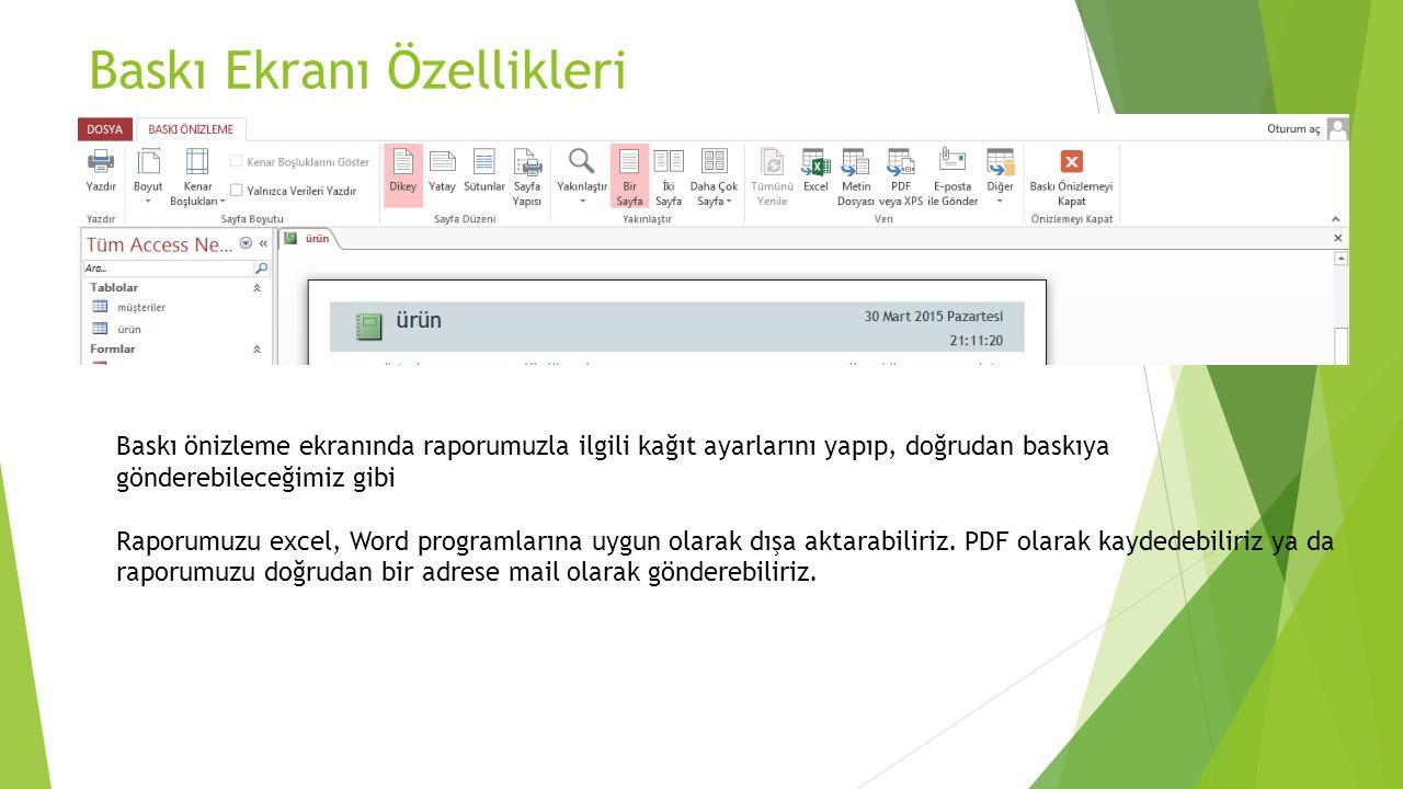 Baskı Ekranı Özellikleri Baskı önizleme ekranında raporumuzla ilgili kağıt ayarlarını yapıp, doğrudan baskıya gönderebileceğimiz gibi Raporumuzu excel
