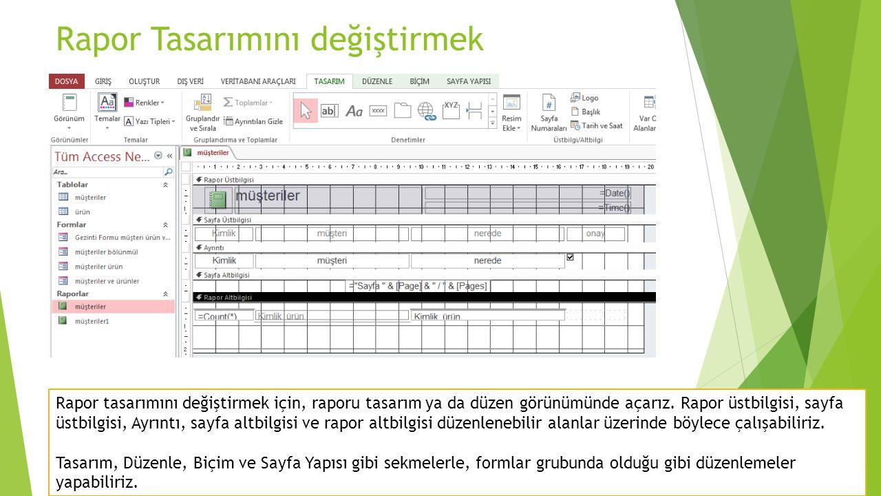 Rapora Denetim Eklemek  Bir rapor ilişkili veya ilişkisiz denetimlerden oluşur.