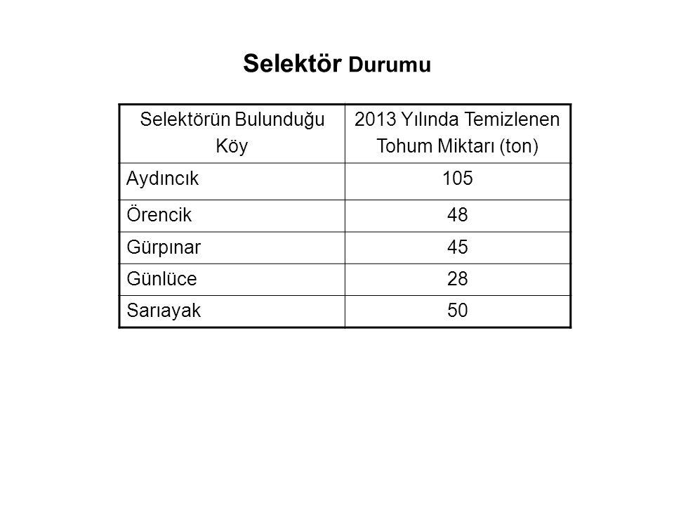 Selektör Durumu Selektörün Bulunduğu Köy 2013 Yılında Temizlenen Tohum Miktarı (ton) Aydıncık105 Örencik48 Gürpınar45 Günlüce28 Sarıayak50