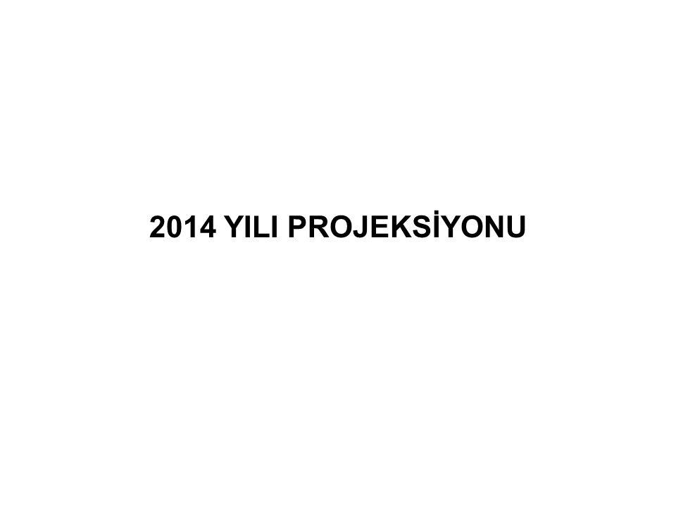 2014 YILI PROJEKSİYONU