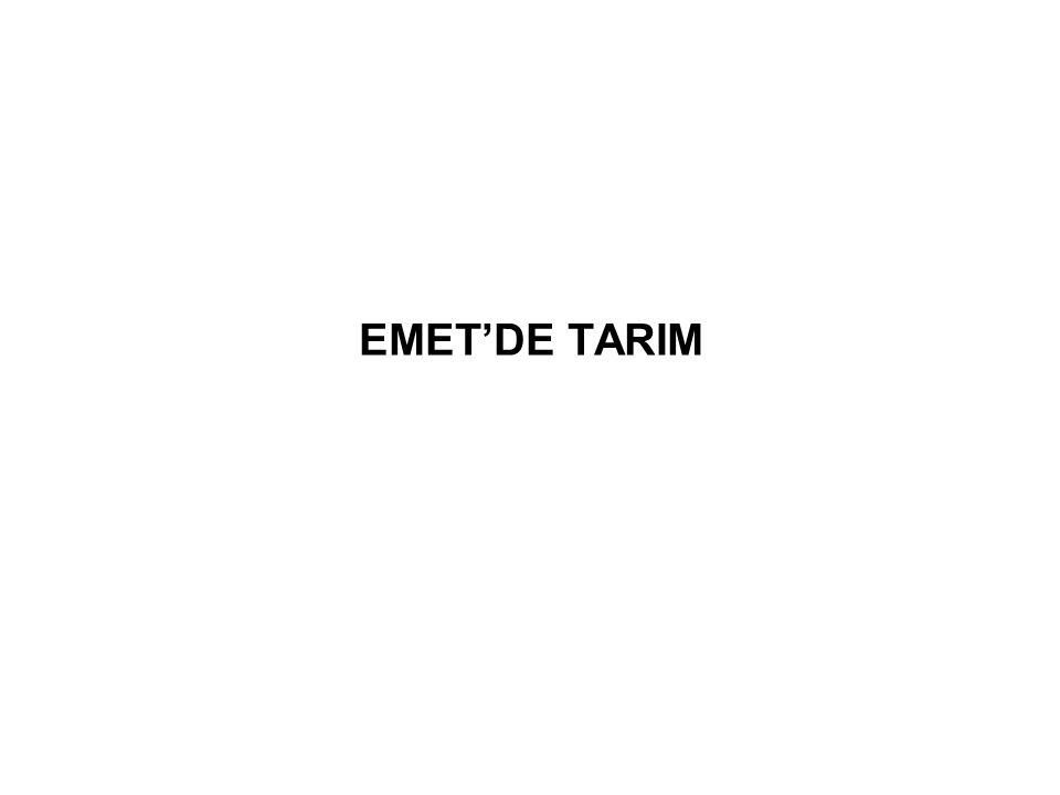 EMET'DE TARIM