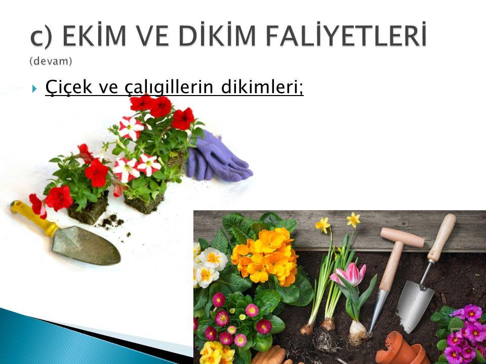  Çiçek ve çalıgillerin dikimleri;