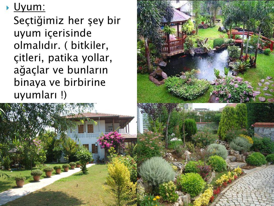  Uyum: Seçtiğimiz her şey bir uyum içerisinde olmalıdır. ( bitkiler, çitleri, patika yollar, ağaçlar ve bunların binaya ve birbirine uyumları !)