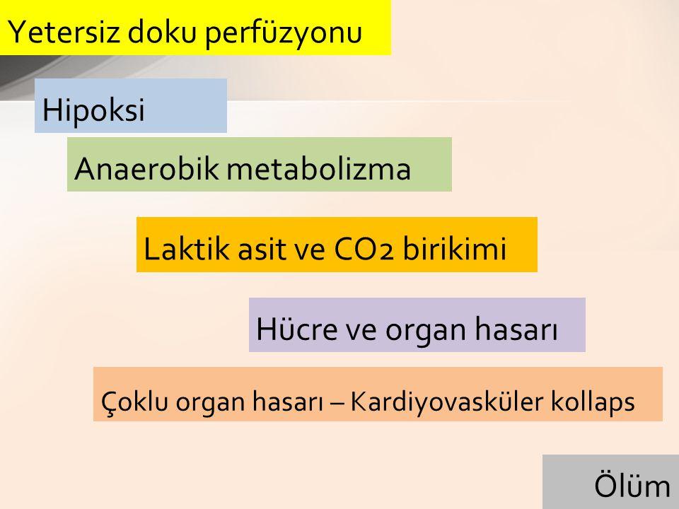 Hipoksemik hipoksi Anemik hipoksi İskemik hipoksi Histotoksik (sitotoksik) hipoksi Doku hipoksisi nedenleri: