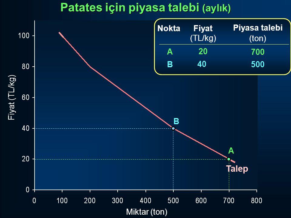 Miktar (ton) Fiyat (TL/kg) Fiyat (TL/kg) 20 40 Piyasa talebi (ton) 700 500 ABAB Nokta A B Talep Patates için piyasa talebi (aylık)