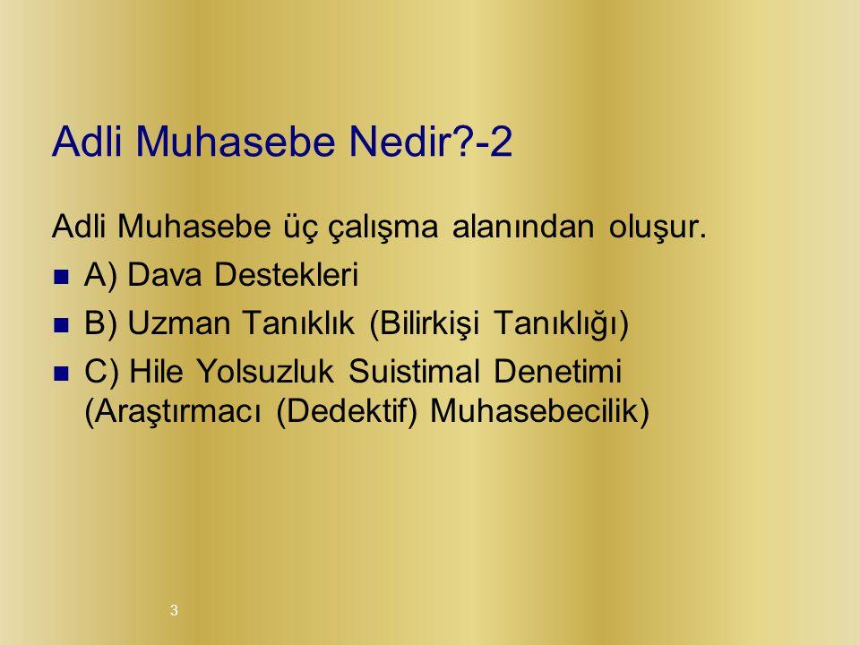 3 Adli Muhasebe Nedir?-2 Adli Muhasebe üç çalışma alanından oluşur.