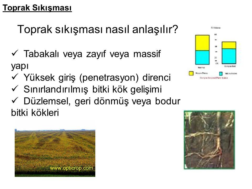 Toprak sıkışması nasıl anlaşılır? Tabakalı veya zayıf veya massif yapı Yüksek giriş (penetrasyon) direnci Sınırlandırılmış bitki kök gelişimi Düzlemse