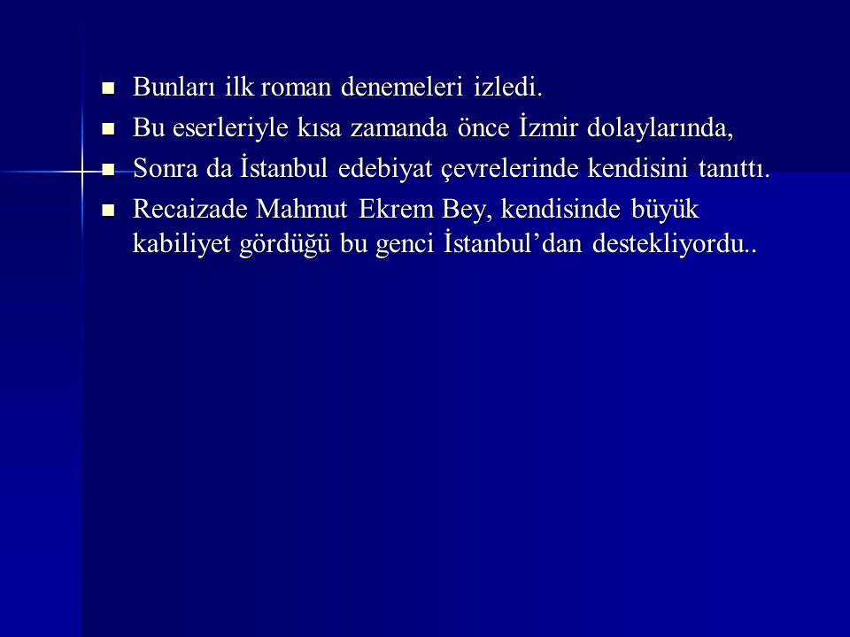 1893 yılında, Rei-i ve Düyun-u Umumiye idarelerinde görev alarak İstanbul'a gelip yerleşti.