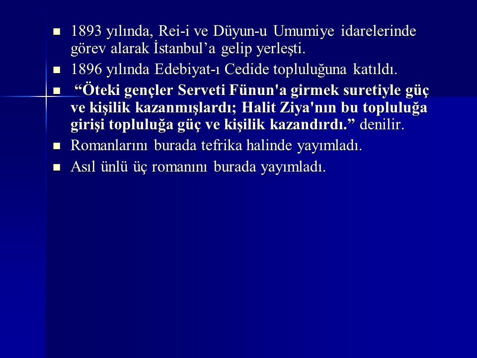 1893 yılında, Rei-i ve Düyun-u Umumiye idarelerinde görev alarak İstanbul'a gelip yerleşti. 1893 yılında, Rei-i ve Düyun-u Umumiye idarelerinde görev