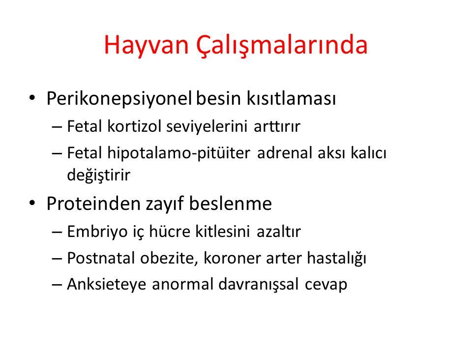 Hayvan Çalışmalarında Perikonepsiyonel besin kısıtlaması – Fetal kortizol seviyelerini arttırır – Fetal hipotalamo-pitüiter adrenal aksı kalıcı değiştirir Proteinden zayıf beslenme – Embriyo iç hücre kitlesini azaltır – Postnatal obezite, koroner arter hastalığı – Anksieteye anormal davranışsal cevap