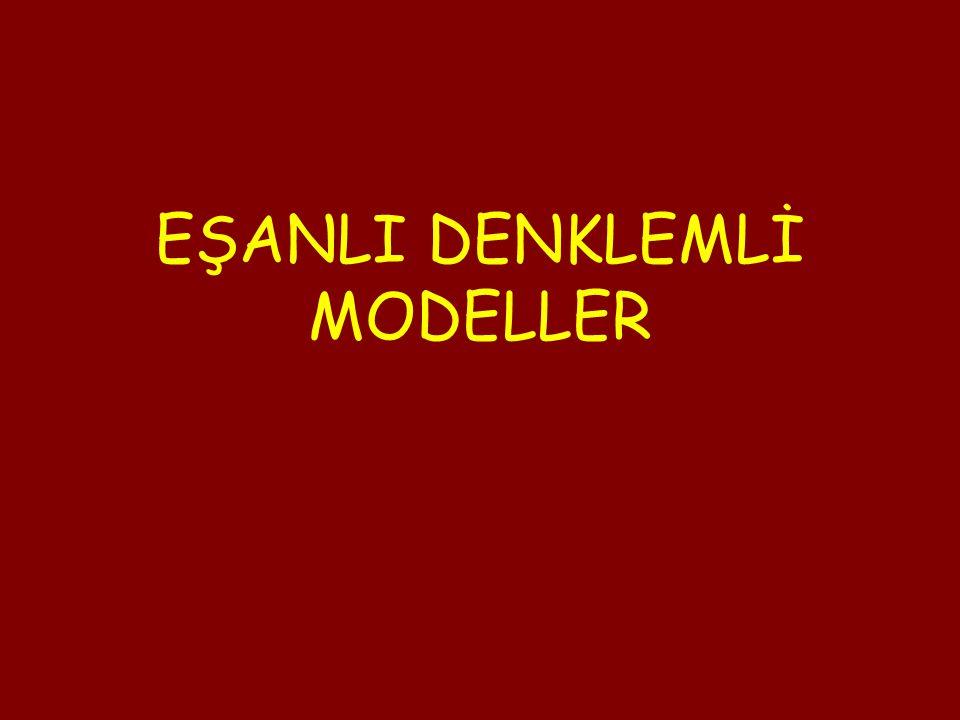 EŞANLI DENKLEMLİ MODELLER