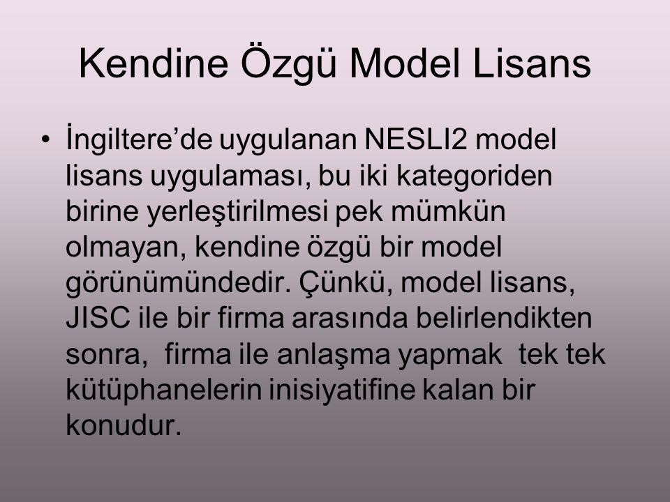 Kendine Özgü Model Lisans İngiltere'de uygulanan NESLI2 model lisans uygulaması, bu iki kategoriden birine yerleştirilmesi pek mümkün olmayan, kendine