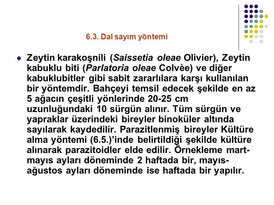6.3. Dal sayım yöntemi Zeytin karakoşnili (Saissetia oleae Olivier), Zeytin kabuklu biti (Parlatoria oleae Colvèe) ve diğer kabuklubitler gibi sabit z