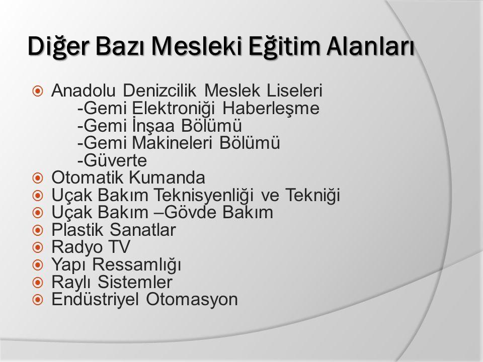 Diğer Bazı Mesleki Eğitim Alanları  Anadolu Denizcilik Meslek Liseleri -Gemi Elektroniği Haberleşme -Gemi İnşaa Bölümü -Gemi Makineleri Bölümü -Güver