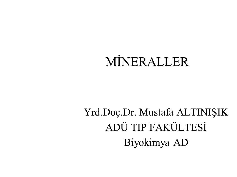 MİNERALLER Yrd.Doç.Dr. Mustafa ALTINIŞIK ADÜ TIP FAKÜLTESİ Biyokimya AD