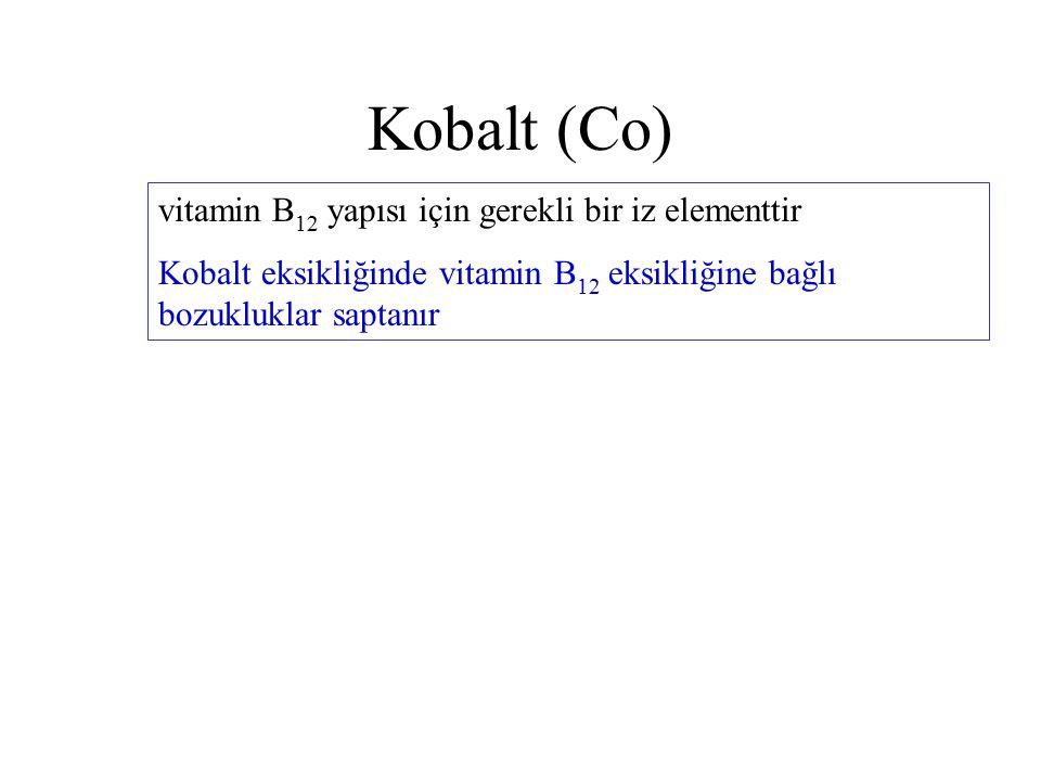 Kobalt (Co) vitamin B 12 yapısı için gerekli bir iz elementtir Kobalt eksikliğinde vitamin B 12 eksikliğine bağlı bozukluklar saptanır