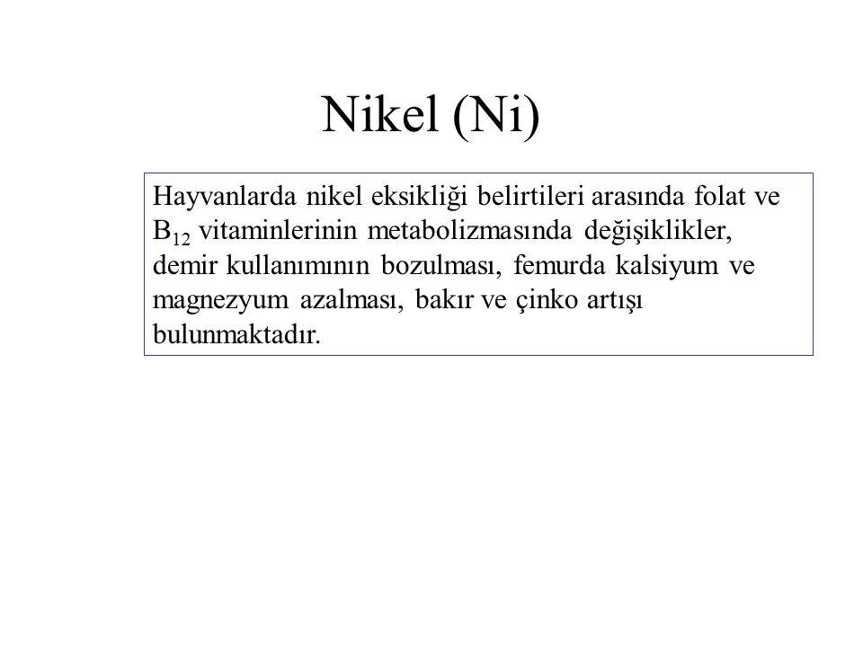 Nikel (Ni) Hayvanlarda nikel eksikliği belirtileri arasında folat ve B 12 vitaminlerinin metabolizmasında değişiklikler, demir kullanımının bozulması, femurda kalsiyum ve magnezyum azalması, bakır ve çinko artışı bulunmaktadır.