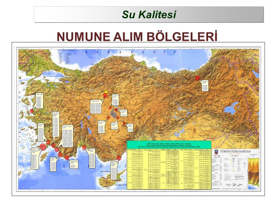 NUMUNE ALIM BÖLGELERİ Su Kalitesi