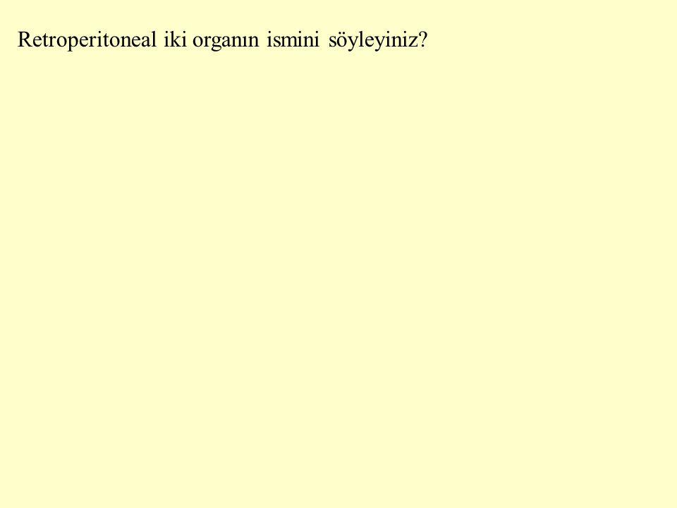 Retroperitoneal iki organın ismini söyleyiniz?