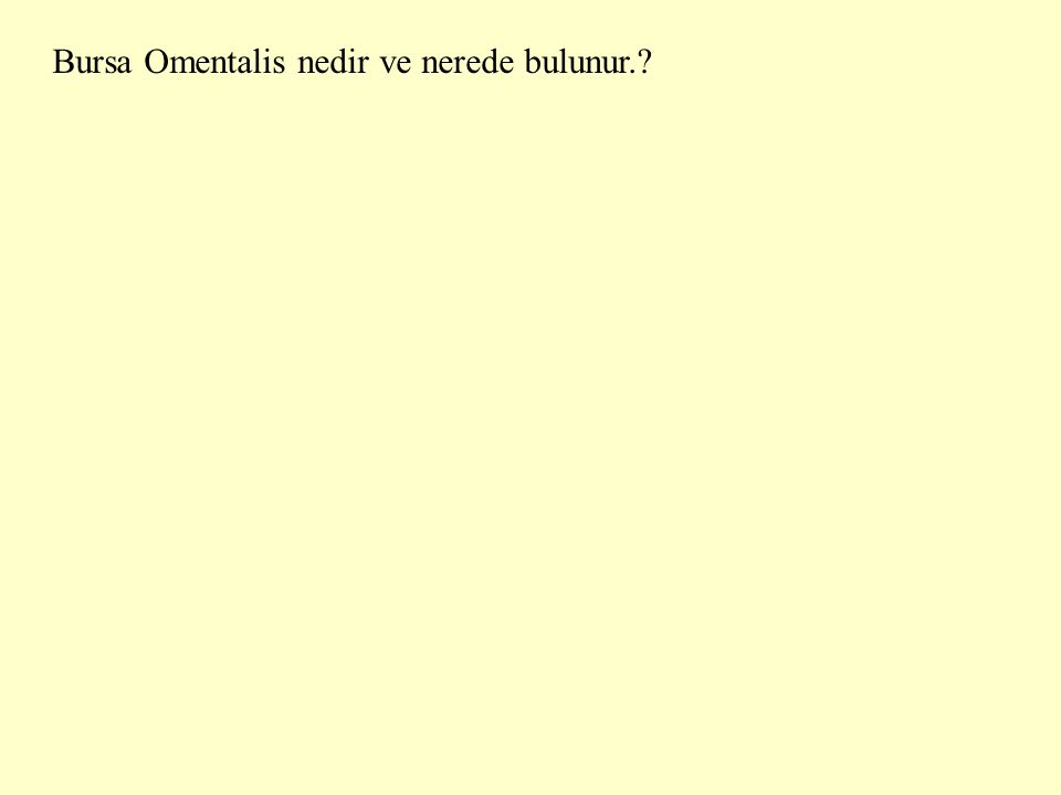Bursa Omentalis nedir ve nerede bulunur.?