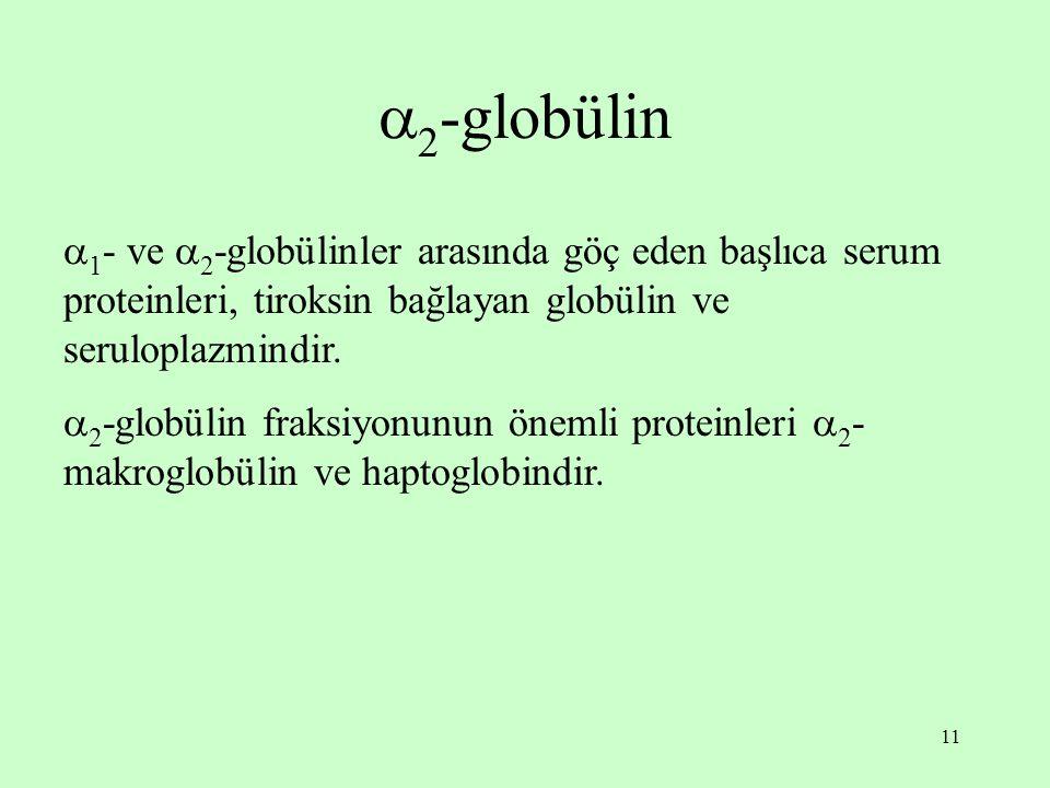 11  2 -globülin  1 - ve  2 -globülinler arasında göç eden başlıca serum proteinleri, tiroksin bağlayan globülin ve seruloplazmindir.