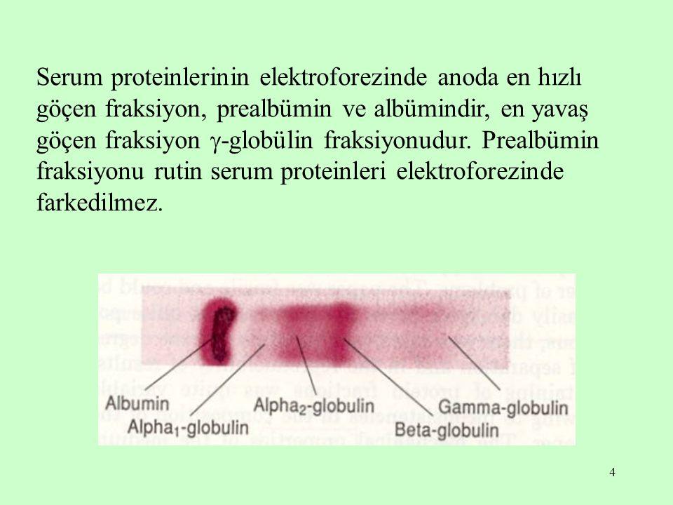 4 Serum proteinlerinin elektroforezinde anoda en hızlı göçen fraksiyon, prealbümin ve albümindir, en yavaş göçen fraksiyon  -globülin fraksiyonudur.