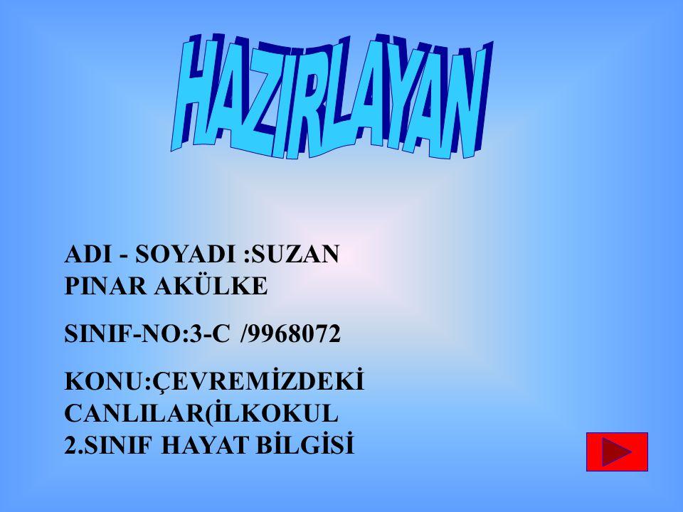 ADI - SOYADI :SUZAN PINAR AKÜLKE SINIF-NO:3-C /9968072 KONU:ÇEVREMİZDEKİ CANLILAR(İLKOKUL 2.SINIF HAYAT BİLGİSİ