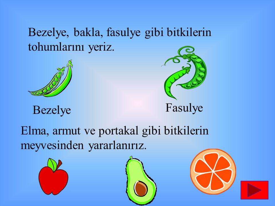 Bezelye, bakla, fasulye gibi bitkilerin tohumlarını yeriz. Bezelye Fasulye Elma, armut ve portakal gibi bitkilerin meyvesinden yararlanırız.
