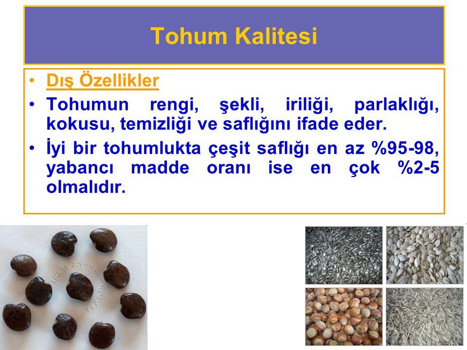 Tohum Kalitesi Dış Özellikler Tohumun rengi, şekli, iriliği, parlaklığı, kokusu, temizliği ve saflığını ifade eder.