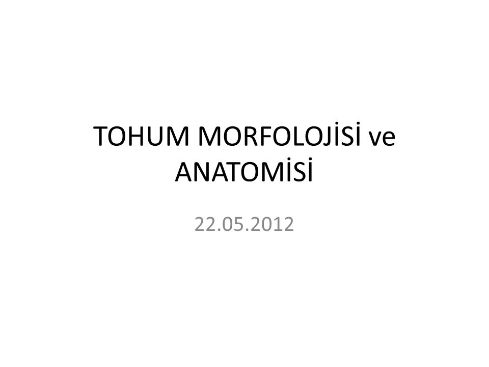 TOHUM MORFOLOJİSİ ve ANATOMİSİ 22.05.2012