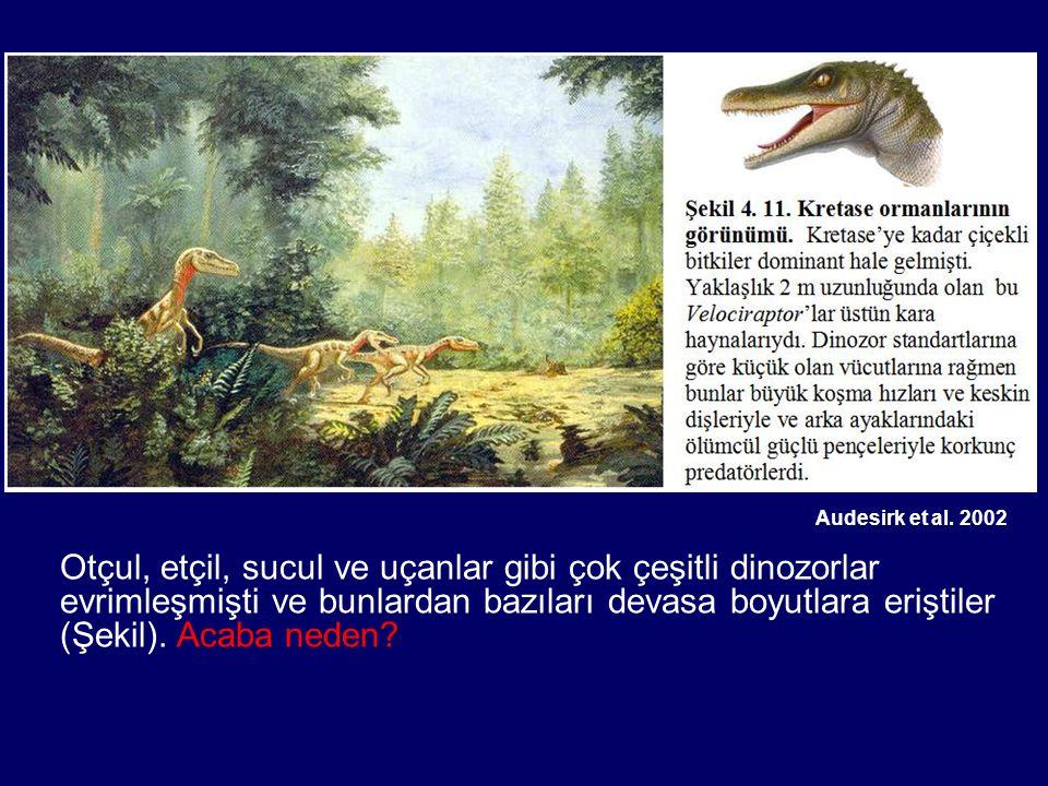 Audesirk et al. 2002 Otçul, etçil, sucul ve uçanlar gibi çok çeşitli dinozorlar evrimleşmişti ve bunlardan bazıları devasa boyutlara eriştiler (Şekil)