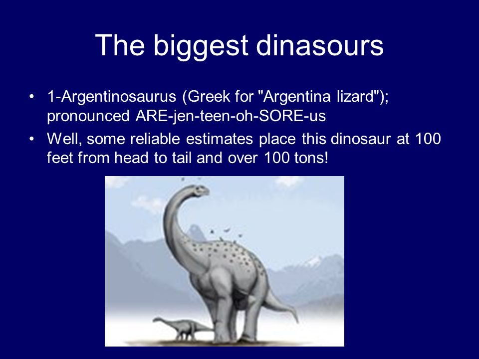 The biggest dinasours 1-Argentinosaurus (Greek for
